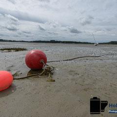 Ebbe in der Normandie Frankreich © Foto: Holger Hütte 2014