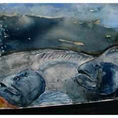 Lofotaquarium, Aquarell, 38x48 cm
