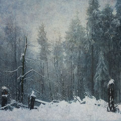 """<span style=""""font-family: Ubuntu Condensed; letter-spacing:0.3em;"""">WAKING IN WINTER</span><br>"""