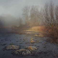 "<span style=""font-family: Ubuntu Condensed; letter-spacing:0.3em;"">MORNING MIST OVER THE SWAMP</span> </p>"