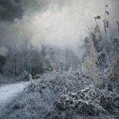 """<span style=""""font-family: Ubuntu Condensed; letter-spacing:0.3em;"""">EARLY MORNING FROST</span> </p>"""