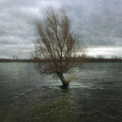 "<span style=""letter-spacing:0.3em"">WIND ON WATER</span><br"