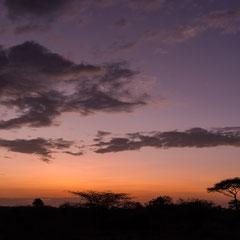 Serengeti - Sonnenaufgang im Ikoma Camp