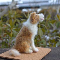 ボーダーコリー羊毛フェルト人形 オーダー制作