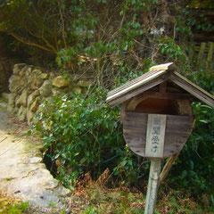 加茂の道路沿い 妖怪ポストみたい 笑