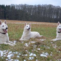 Kira, Shameera, Leona