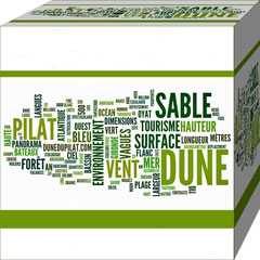 First Word Cloud About Dune Du Pilat