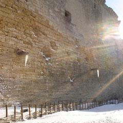 photo du château sous la neige