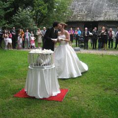 Hochzeit in Cloppenburg (Museumsdorf)