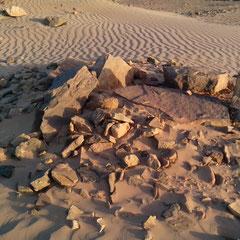 SaharaSalvaje. Necropolis FoumRjam