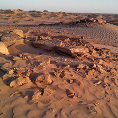 Sahara Salvaje. Foum Rjam, necrópolis, tumulos