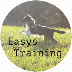 Easys Training