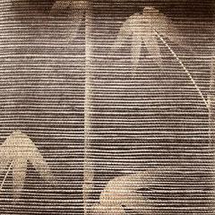 Sisaltapete mit Bambusmotiv, schwarz