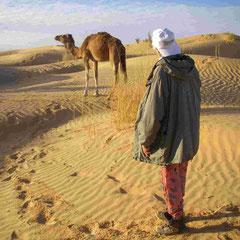 Terdelt en Tunisie !