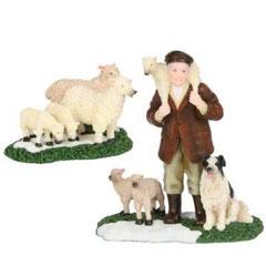 601525-Shepherd