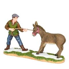 601533-Benjamin with mule