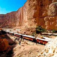 Train Lezard Rouge