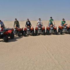 Grupo veterinaria en el Sáhara