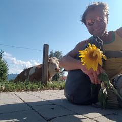 kurztrip nach übersee am chiemsee, 17.08.2018: rindviech(-er)