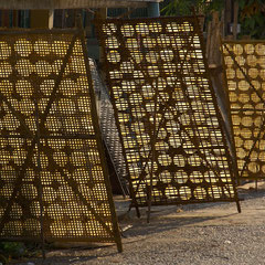 Laos, Luang Prabang: sticky rice cakes drying vertically in sun