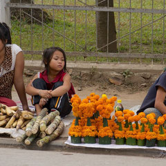 Laos, Luang Prabang: vendors on Kitsalat Street selling temple offerings of marigold flowers