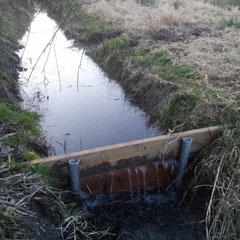 10.03.14 Von der Gemeinde Lollar und dem NABU Salzböden wurde kurzfrisitg ein kleines Wehr zum Anstau des Wasser installiert! - Foto: Björn Behrendt