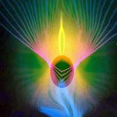Wenn ein Engel deine Seele berührt,  beginnt mitten im Alltag eine neue Zeit