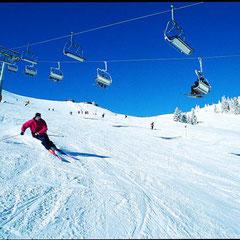Alpinski in der Skiwelt Wilder Kaiser