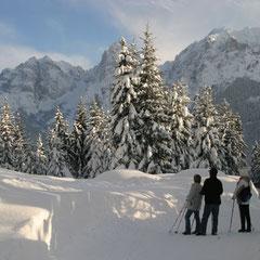 Winterwandern im Kaisertal