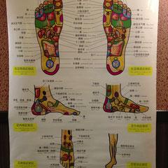 タイ古式マッサージの足ツボ図