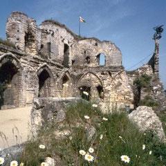 De kasteel ruine valkenburg. De enige hoogteburcht van Nederland