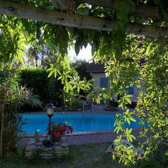 vue sur la piscine de votre salon de jardin