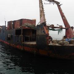 auf diesem Schiffswrack werden noch Austern geputzt