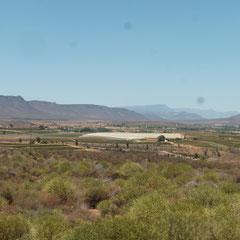 Wieder in Südafrika wird es immer grüner