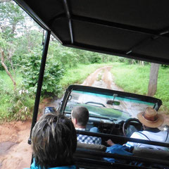 im Jeep unterwegs auf Safari