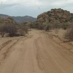 diese Strasse führt uns zu den Ureinwohnern, zu den San