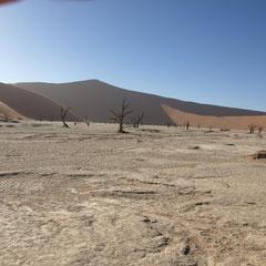 Deadvlei - eine Salzpfanne mit lauter abgestorbener Bäume