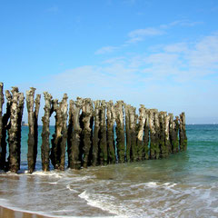 Les piquets de bois de Saint Malo