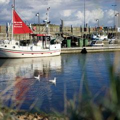 Hvide Sande Hafen 2