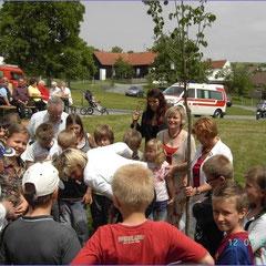 VS Aschau 2008 Friedensbaum