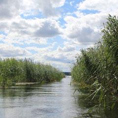 Входим в озеро Комсомольское