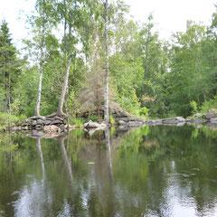 Плотина на Беличьей протоке