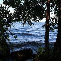 Вечер на острове Барсуковый