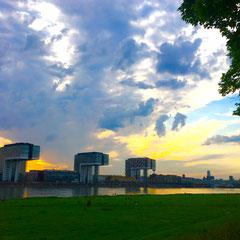 Die Kranhäuser und der Dom, Köln, Poller Wiesen 2016
