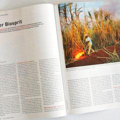 Portfolio Dorina Rundel - Grafikdesignerin: Neue Energie Magazin - Coporate Publishing Doppelseite