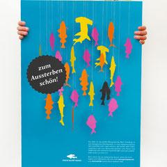 Portfolio Dorina Rundel - Grafikdesignerin: Wettberg Greenpeace