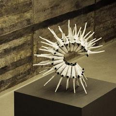 capra ibex - Durchmesser 60 cm - 2008