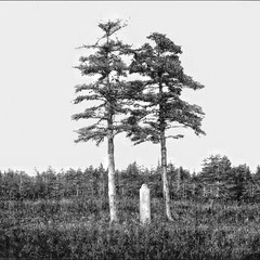 La tombe d'Olivier Gamache à la baie Ellis, autrefois baie Gamache (1908)