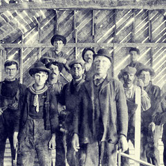 Fox Bay, employés de la homarderie
