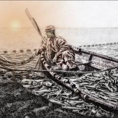 Pêche du hareng à la baie Ellis au mois de juin